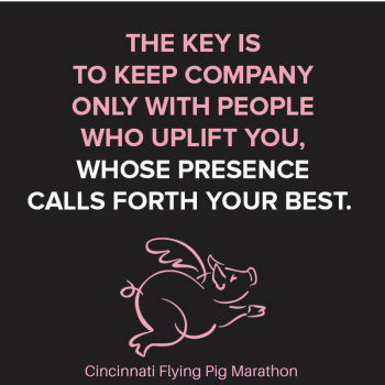 Flying Pig Quote