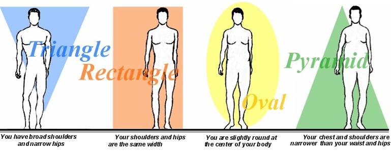 men body type