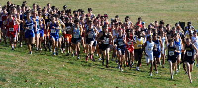 xc runners