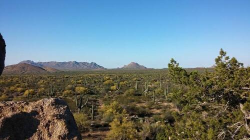 sonoran preserve Scottsdale