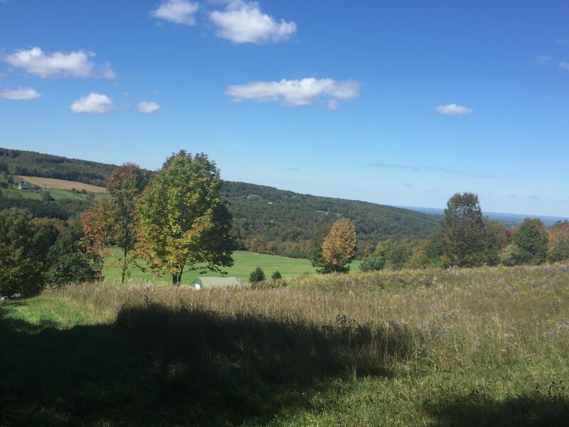 Gorge Trail photo view in Cazenovia