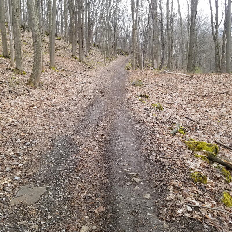 rand tract running route ffsyr