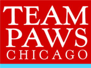 team paws