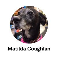 Matilda Coughlan