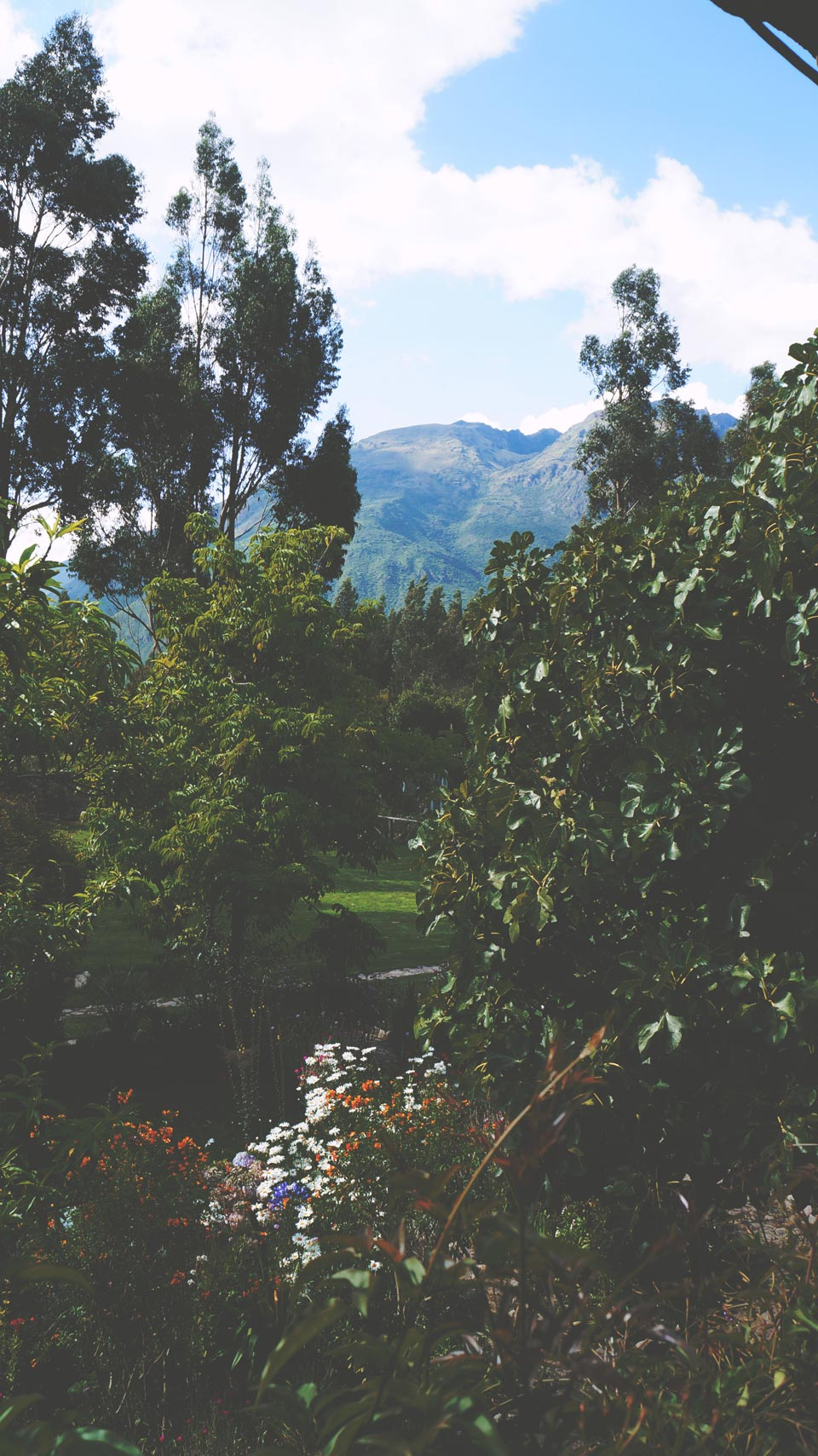 Urubamba Cottage Garden