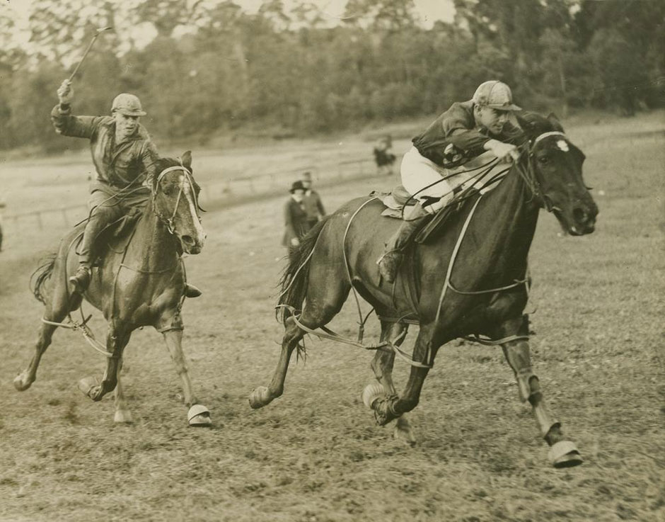 New Old Stock horse racing photo