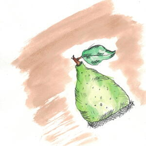 Pear (Watercolor) - Janette