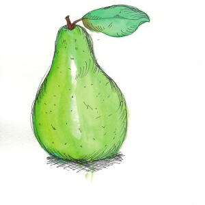 Pear (Watercolor) - Tiffany