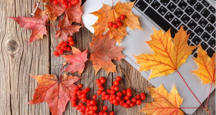 Autumn leaves on laptop
