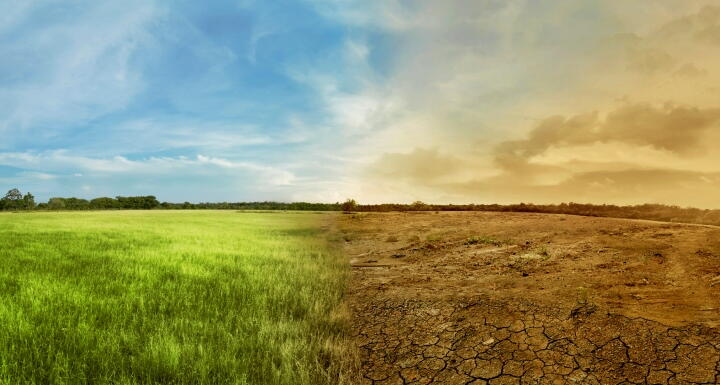 Green and plush landscape side by side with a dry and barren landscape