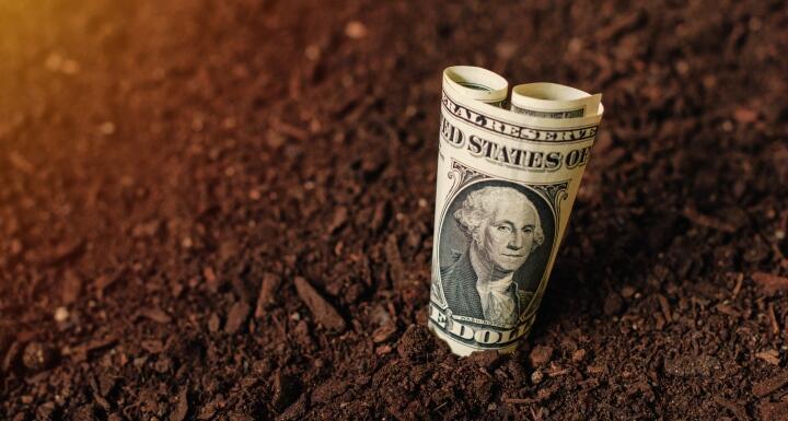 Dollar bill in brown dirt