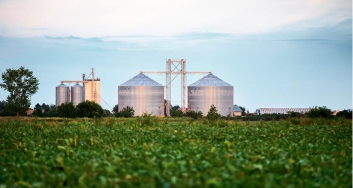 Silos for storing grain harvest