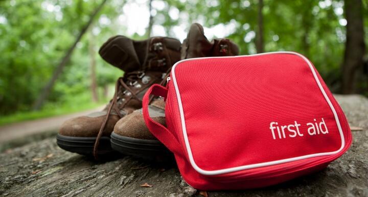 First aid kit on fallen tree trunk