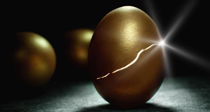 Hatching golden egg