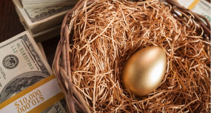 A bird's nest with a golden egg in the middle, on a background of dollar bills