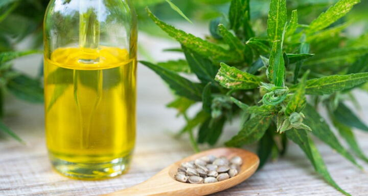Wooden spoon holding hemp flower seeds cbd oil and hemp plant resting on a table