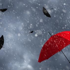 A red umbrella with black umbrellas and rainy skies