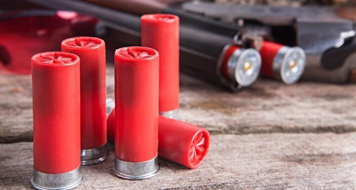 Shotgun and shotgun shells