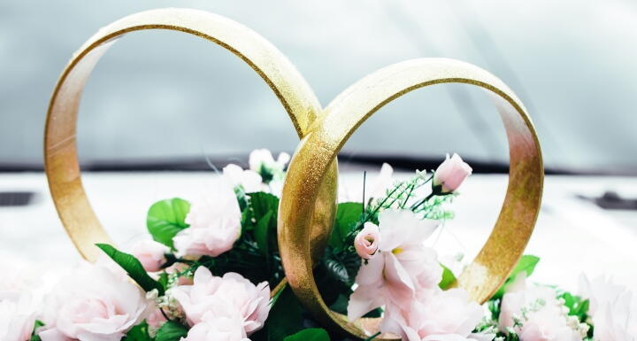 Two wedding rings intersected over pink flowers