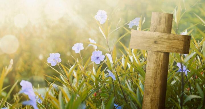 Wooden cross in field with purple flowers