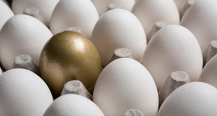 a golden egg in group of white eggs