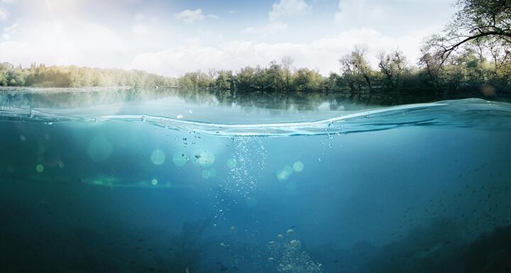 View of underwater of fresh water lake