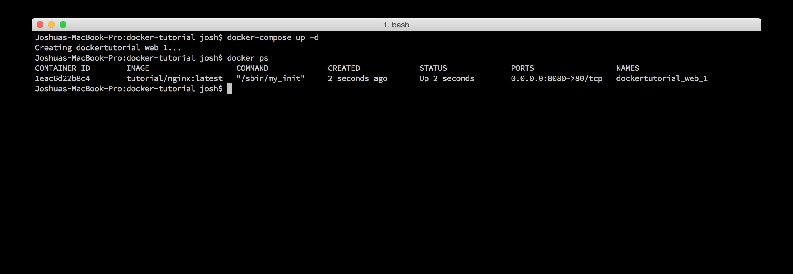 Docker Compose Nginx container