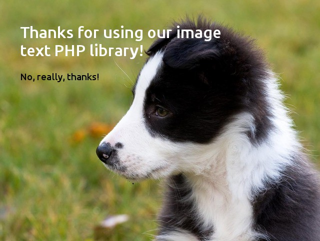 Example image generated with our PHP library
