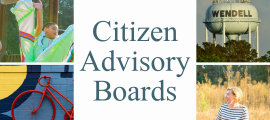 Citizen Boards