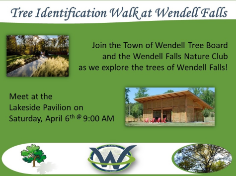 2019 Tree ID Walk