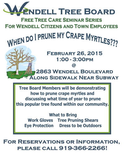 When Do I Prune My Crape Myrtles