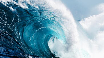 Privacy Law Tidal Wave: Does the new Nevada law affect your business?
