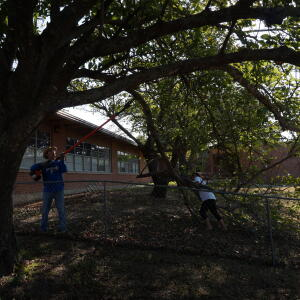 2015 Day of Caring 28