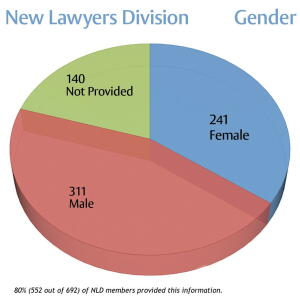 new lawyer division gender