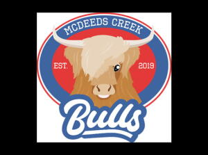 McDeeds Creek Bulls