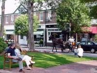Carriage ride - downtown Pinehurst