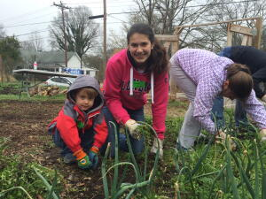 Habitat youth work in the garden at the Angier Avenue Farm