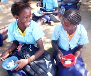 Helping Make 'My Food' a Reality in Mozambique picture