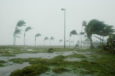hurricane, damage, wind, storm, disaster, relief, planet aid