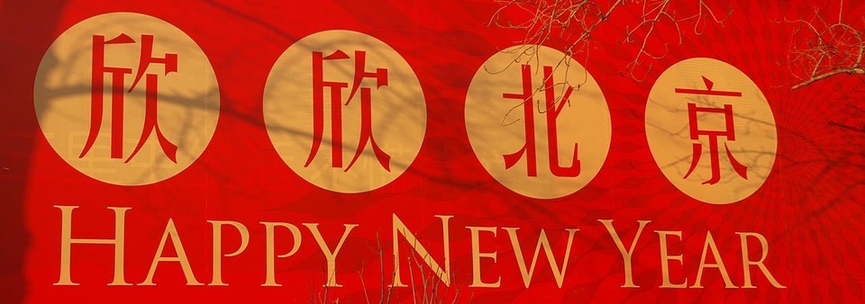 chinese new year, new year, earth dog, planet aid