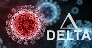 Delta Disruption? image