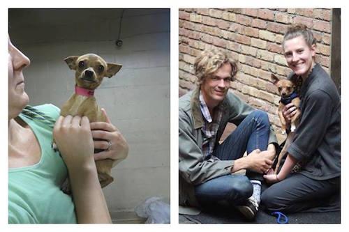 Trio Animal Foundation