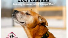 2021 Calendars Are Here!