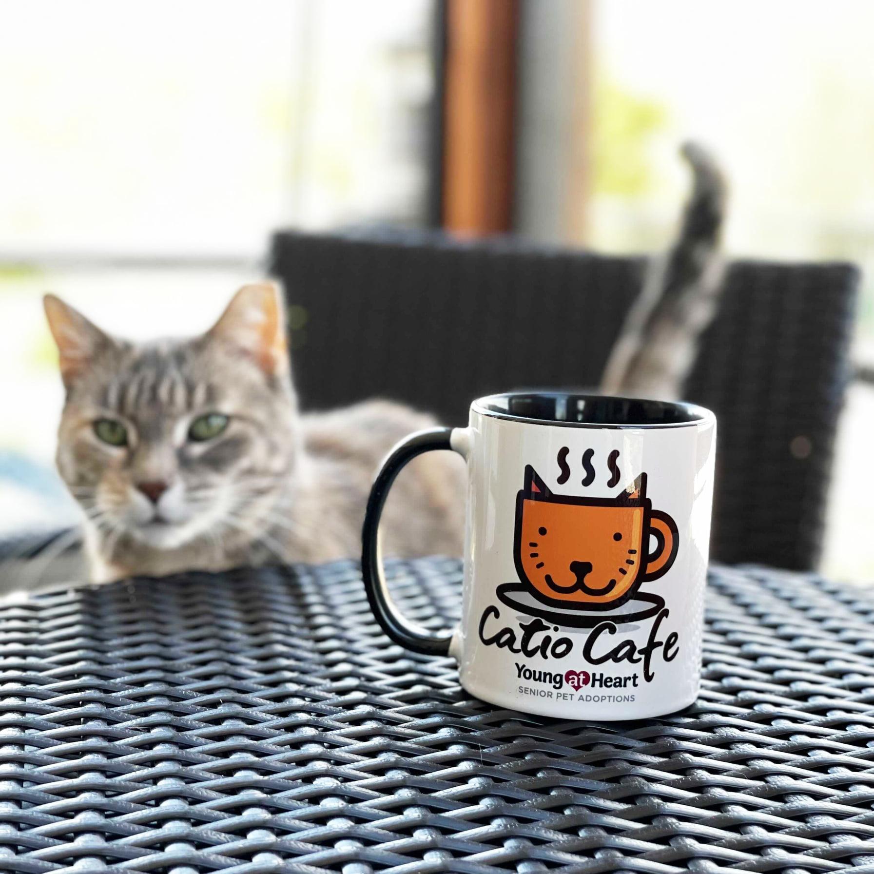 Catio Cafe