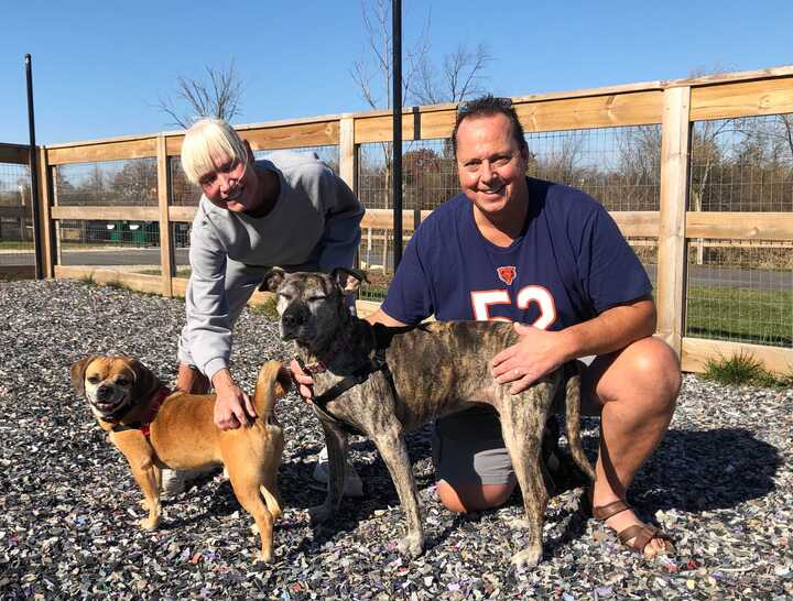 Sunny and Pepper Adopted