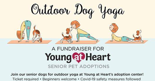 Outdoor Dog Yoga